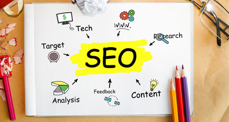seo wordpress